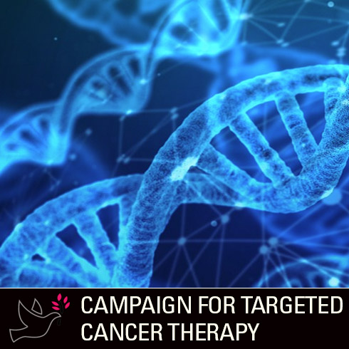 I Am More Than Cancer Campaign: Zaccagnino Campaign for Targeted Cancer Therapy